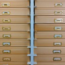 Set of entomological drawers photo by Foo Maosheng